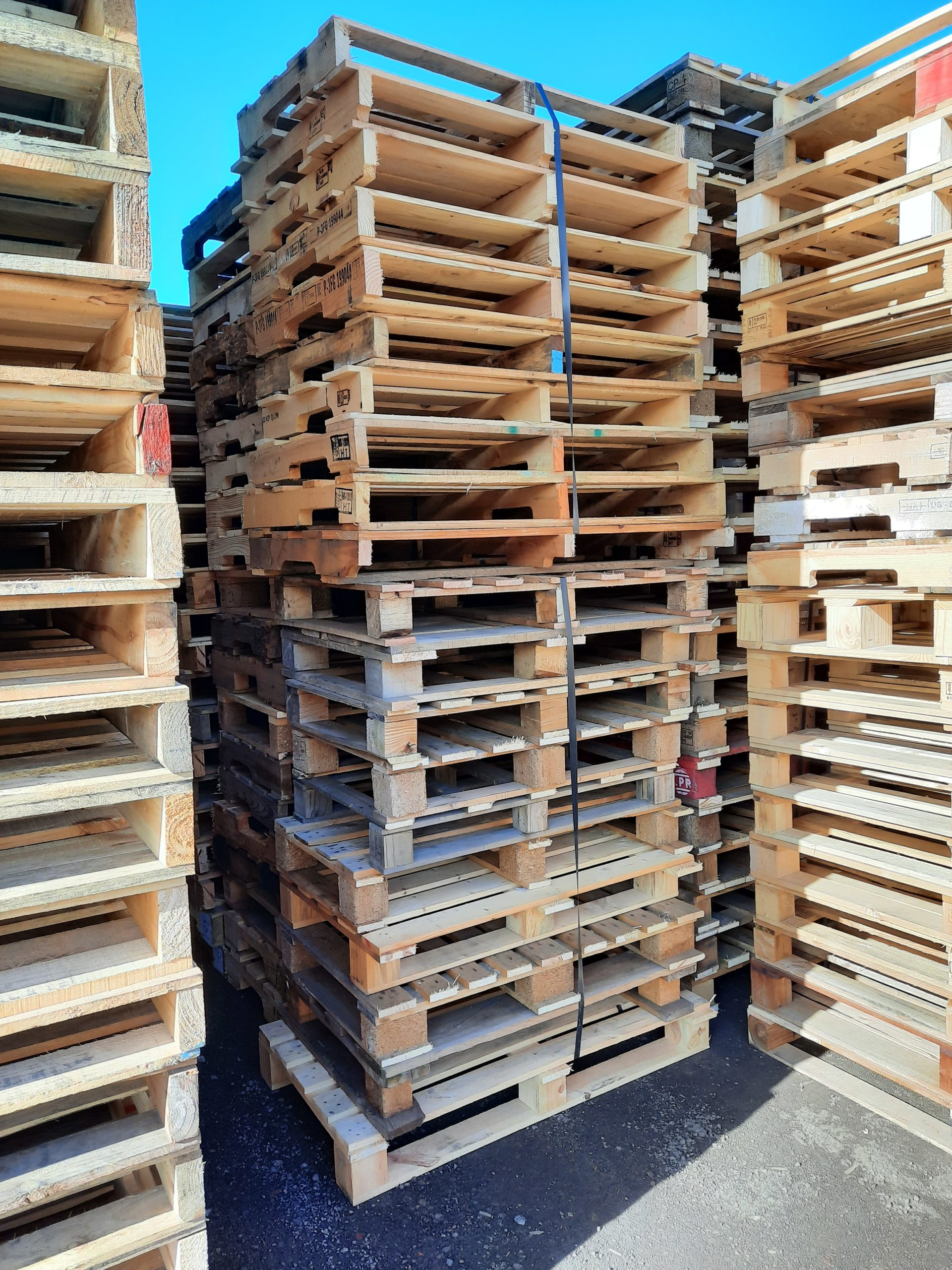 Miscellaneous Small Skid Pallets for Sale in Melbourne ...